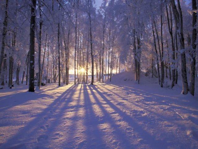 Хүйтний эрч сулрах