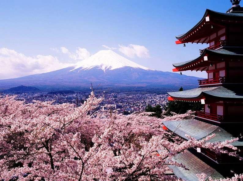 Япон Улсын Засгийн газрын ТЭТГЭЛЭГТ...