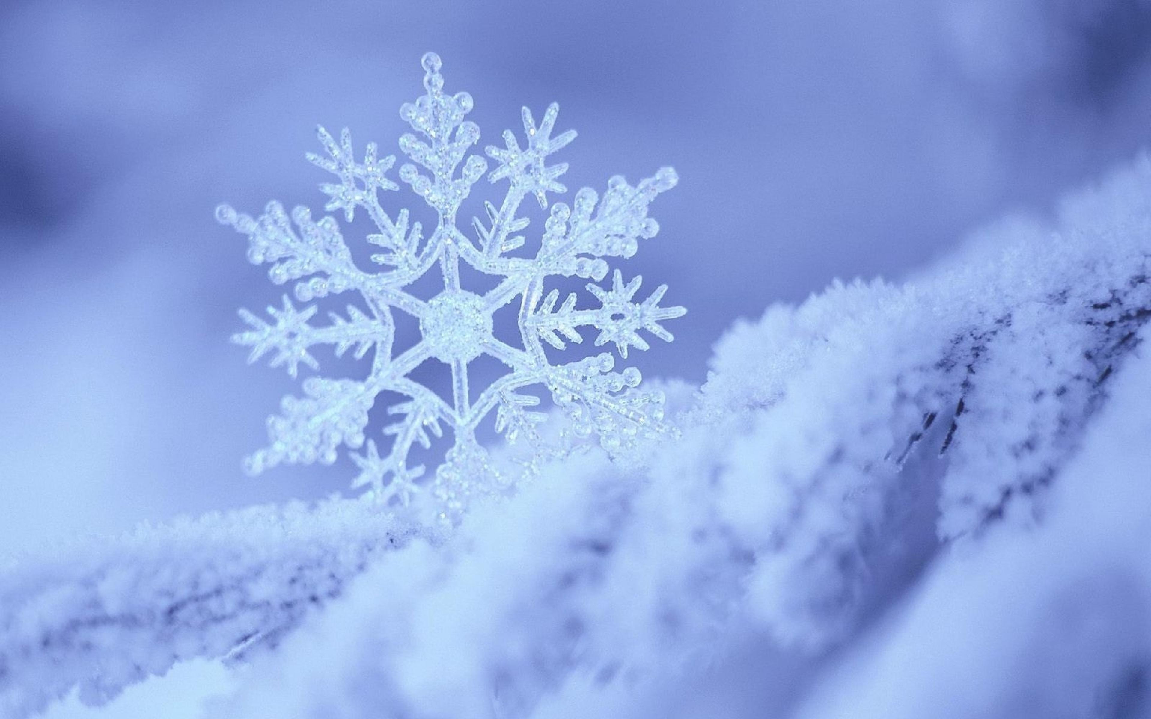 Энэ сард хүйтний эрч чангарч, ирэх...