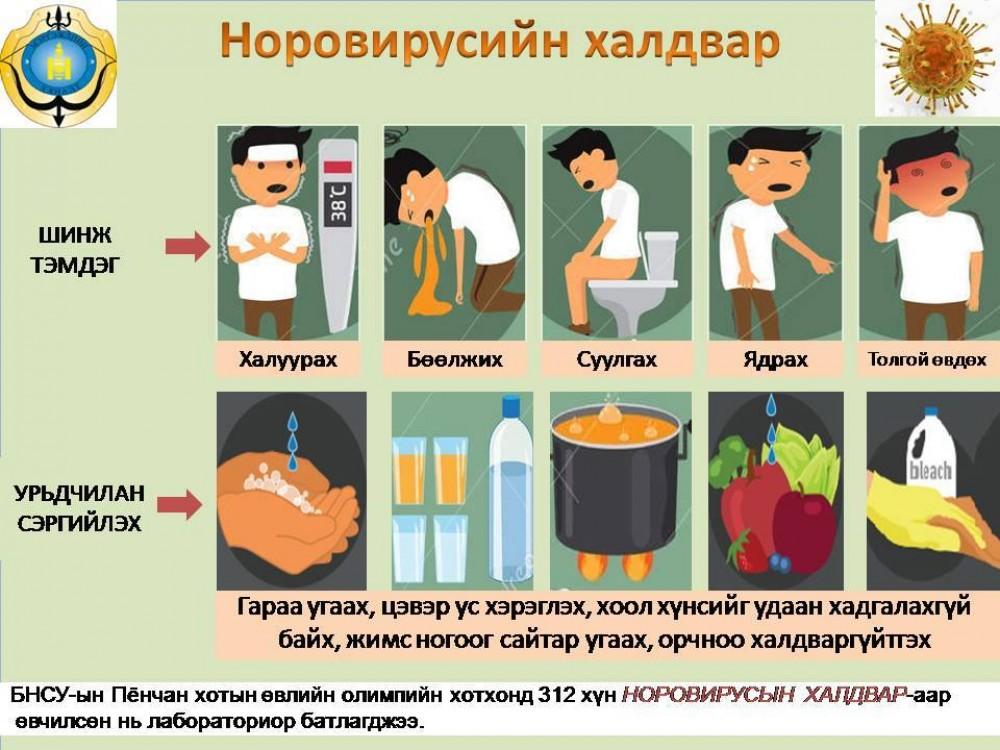 Норовирусын халдвараас урьдчилан...