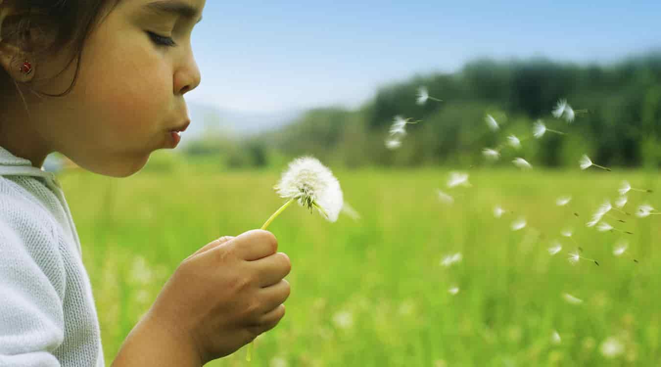 Cургууль, цэцэрлэг АГААР ЦЭВЭРШҮҮЛЭГЧ...