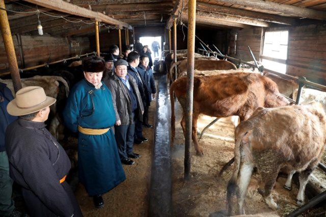 Их Хурлын дарга М.Энхболд Төв аймгийн иргэдтэй уулзаж байна