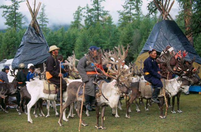 Tsaatan festival