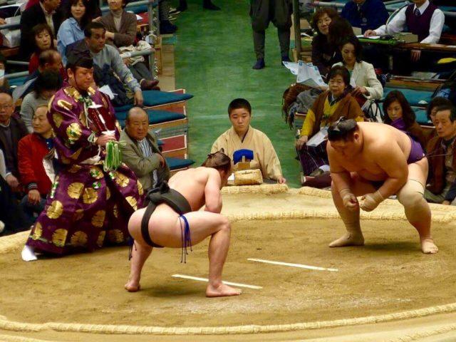 sumo-boh
